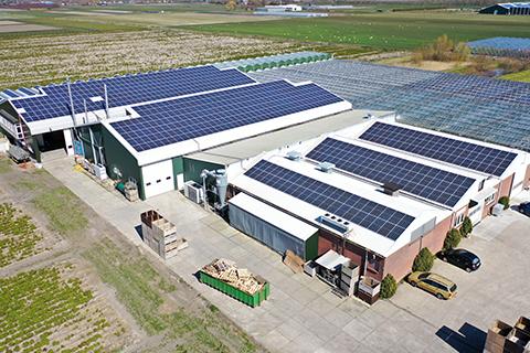 Panele solarne dla firm - Otwarta Energia
